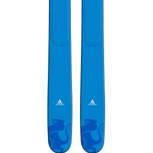 Ski DPS Wailer A106 Alchemist C2 2020