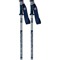 Dynastar Vector 4 Gris/Bleu